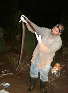 Alberto trabajando con la boa en una cueva